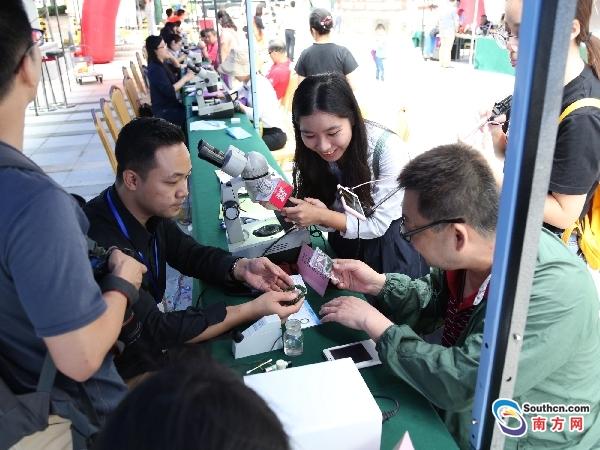 出国旅游万元买到假宝石 省地质局开展免费珠宝鉴定公益活动