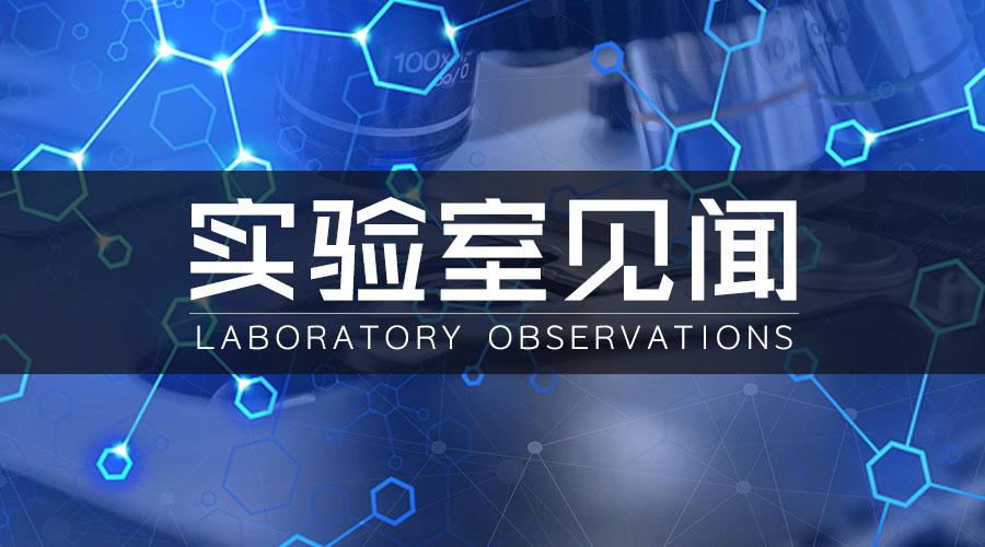专栏丨实验室见闻——扩散处理蓝宝石、玻璃猫眼等