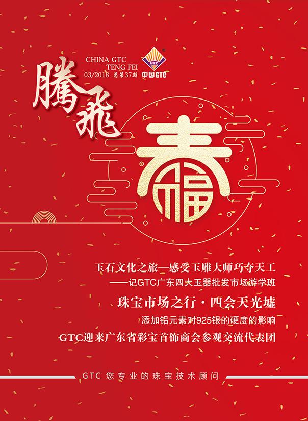 中国GTC《腾飞》内刊第37期
