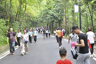 中心文化丨岭上青青登山行