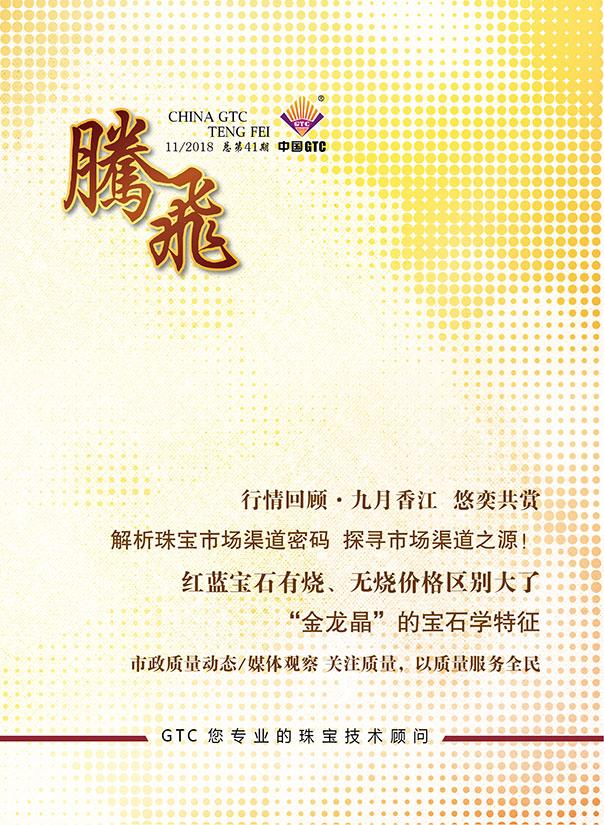 中国GTC《腾飞》内刊第41期