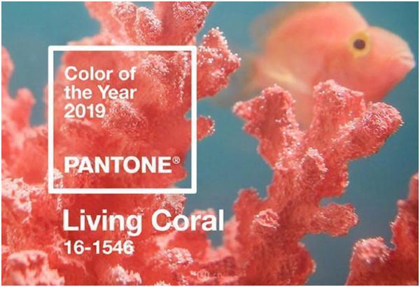 官宣热点珊瑚橘,你的宝石在这
